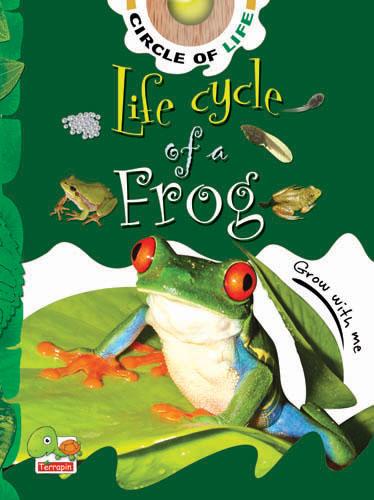 Circle of Life: Life Cycle of a Frog
